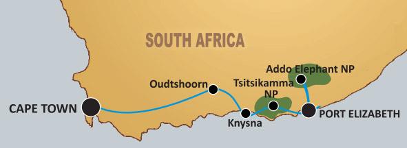Adventure Tour From Port Elizabeth To Cape Town